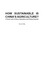 How Sustainable is China